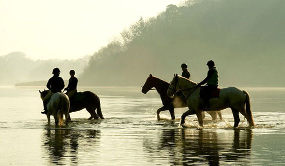 Конный туризм: описание виды,основные понятия,назначение,фото,видео.