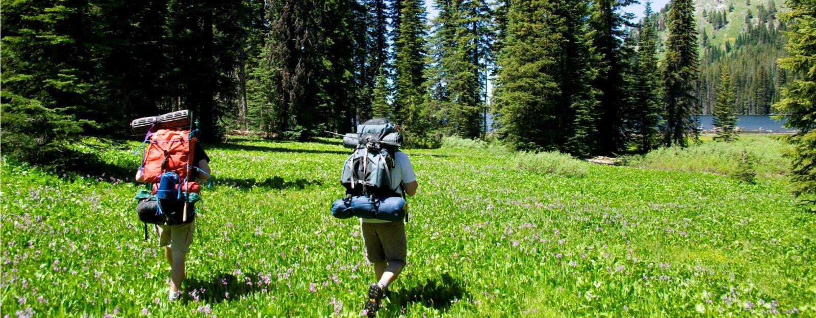 Экологический туризм: описание,виды,назначение,фото,видео.