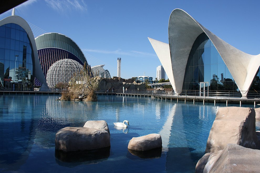 Океанографический парк Валенсии — самый большой океанариум в Европе