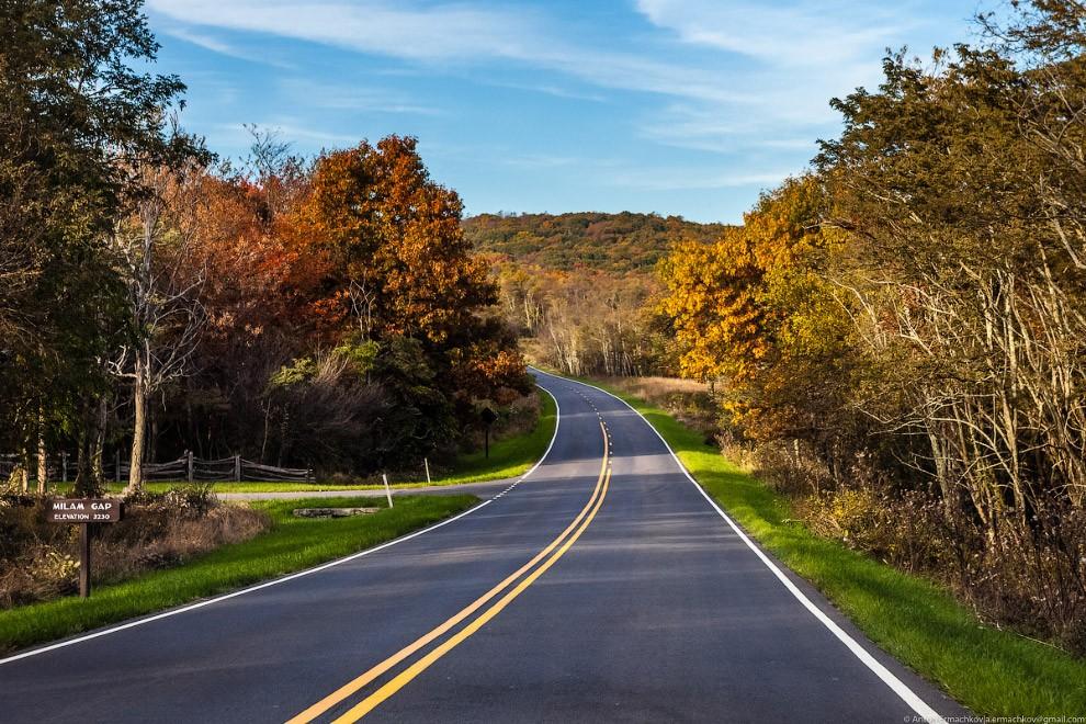 Blue Ridge Parkway — одна из самых красивых дорог в Соединенных Штатах