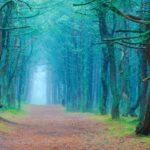 Обзор лучших мест для мистического туризма на 2020 год