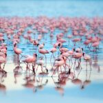 31 самых красивых озер в мире