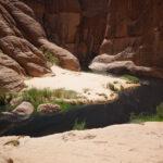 Гельта д'Аршей — район водоёма (гельта) на севере Республики Чад, расположена на плато Эннеди
