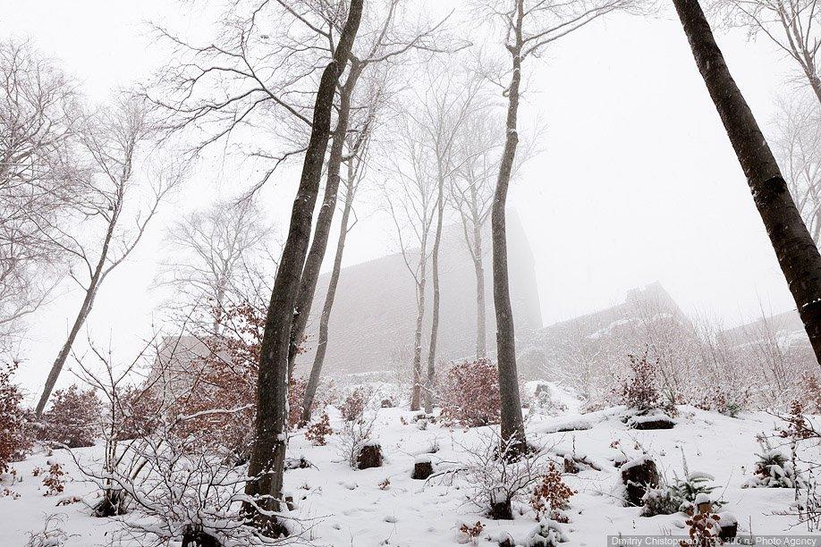 Природный парк «Пфальцский лес» — самые обширные леса в Германии