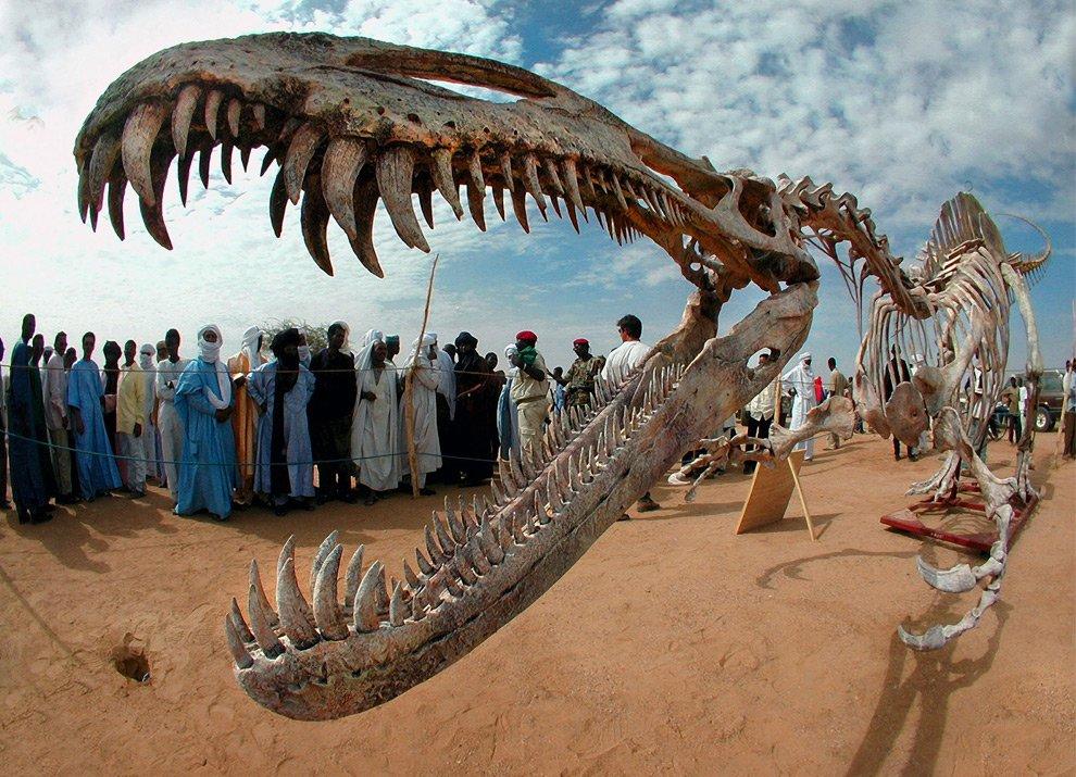 Пустыня Сахара — одна из крупнейших пустынь за Земле, занимающая 9 миллионов квадратных километров